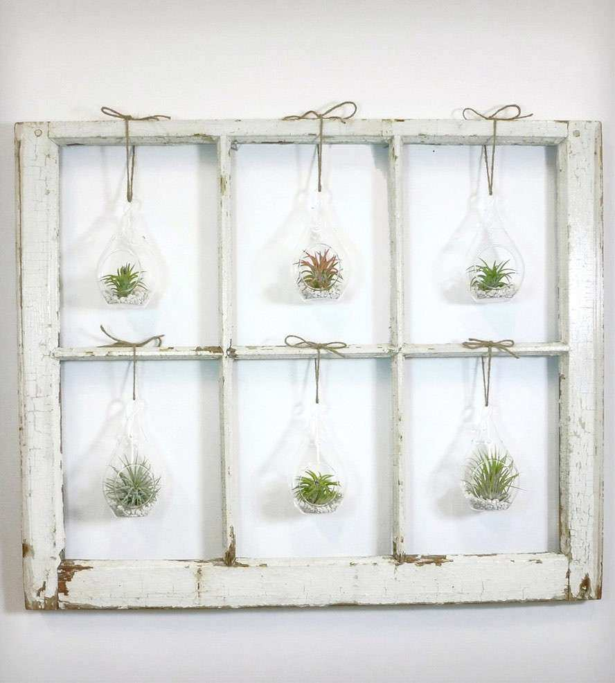 Window Pane Wall Decor Elegant Window Frame Terrarium 6 Pane | Wall ...