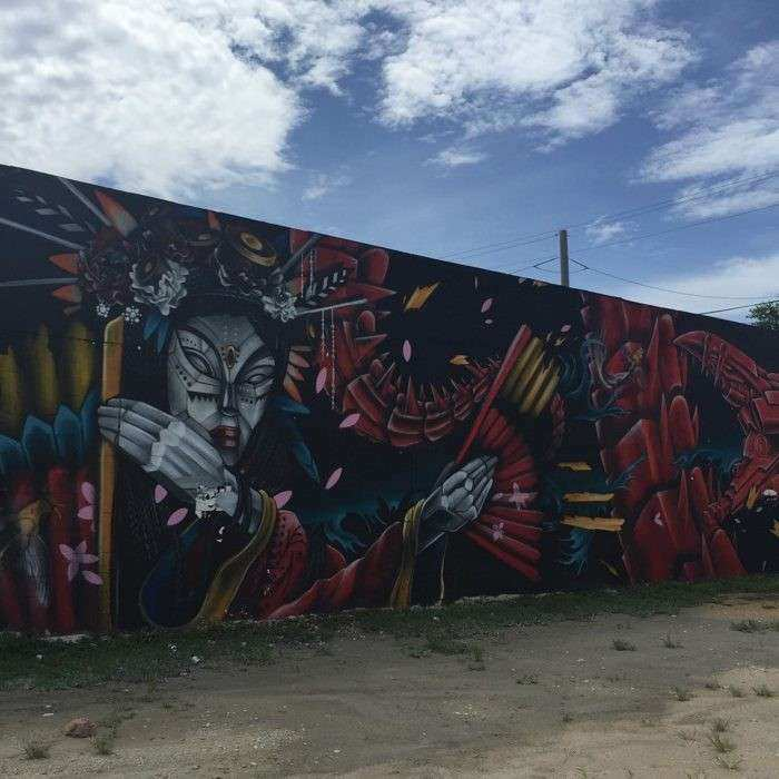 Wynwood Walls Art Walk Beautiful the Arts District In Miami that You Need to See