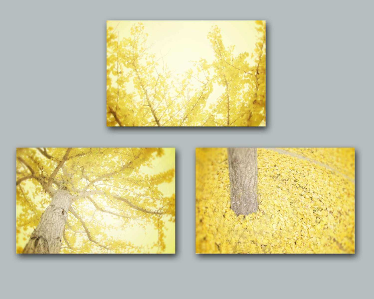 Yellow and Grey Wall Decor Fresh Yellow Wall Art Set Of Three Yellow ...