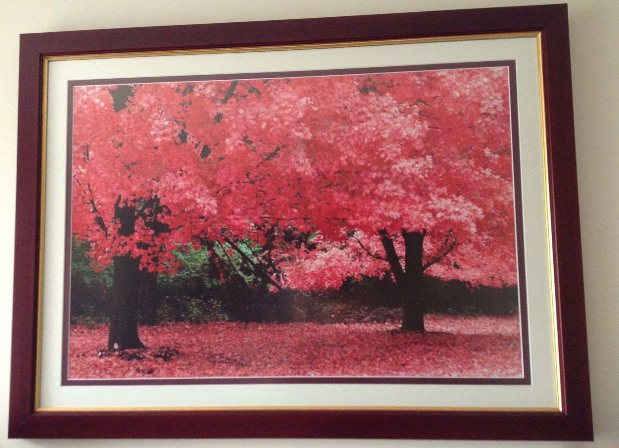 24x30 Frame Awesome Fein 20x30 Picture Frame with Mat Bilder ...
