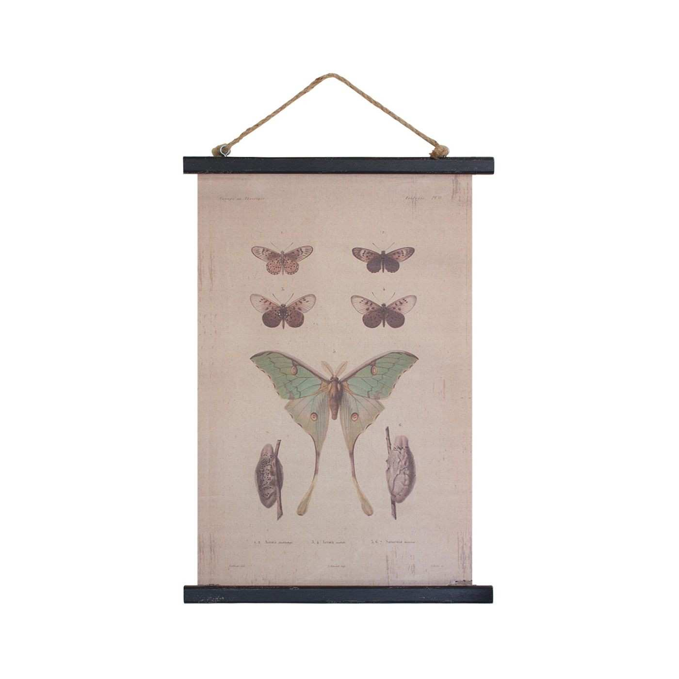 Fancy Flight Canvas Banner Dot & Bo Insects & the Like