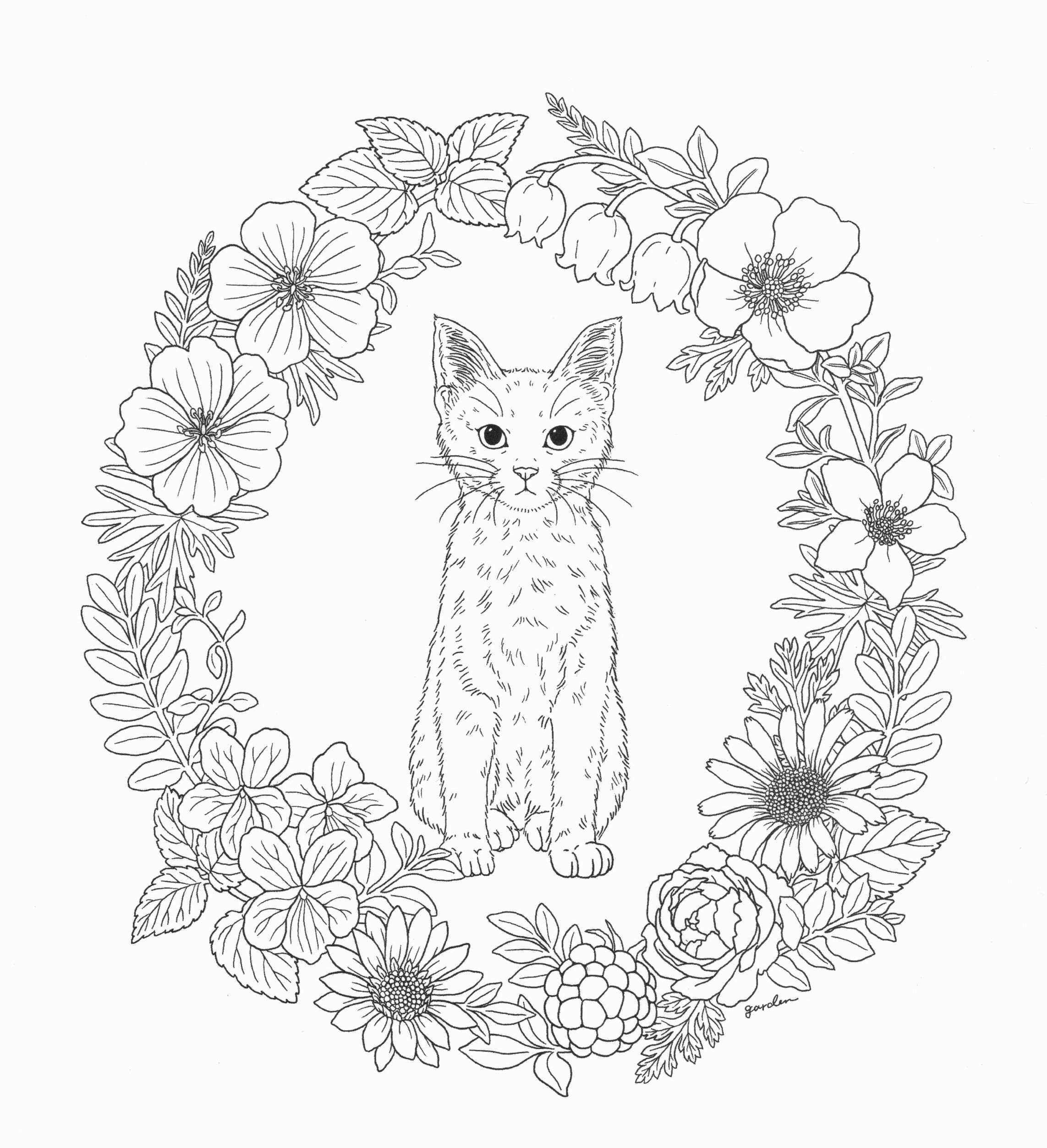 Free Printable Coloring Books for Kids Mocape
