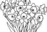 Art for Kids Best Of New Cool Vases Flower Vase Coloring Page Pages Flowers In A top I 0d