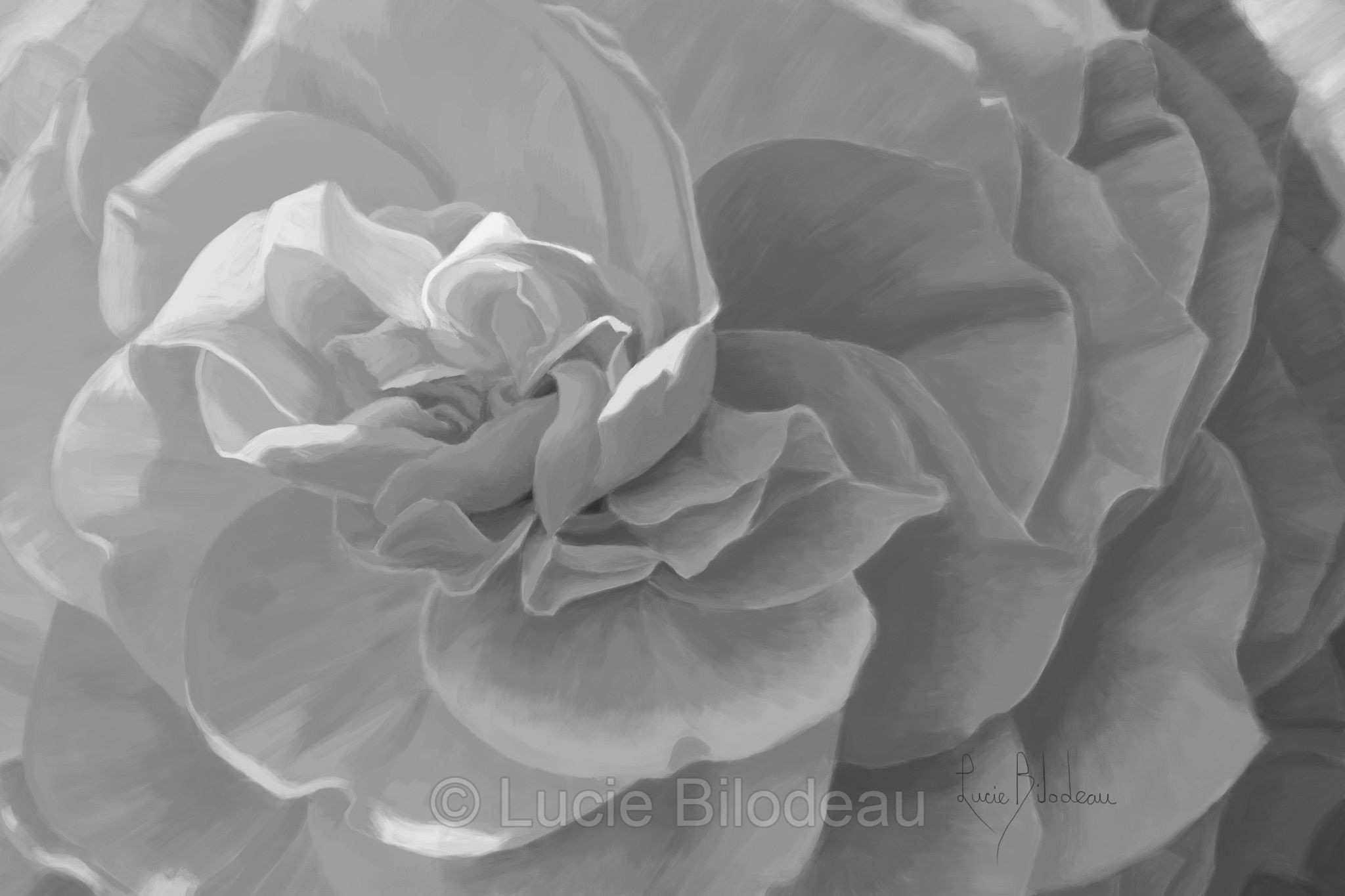 "Black and white version of Lucie Bilodeau s painting ""Cheerful"