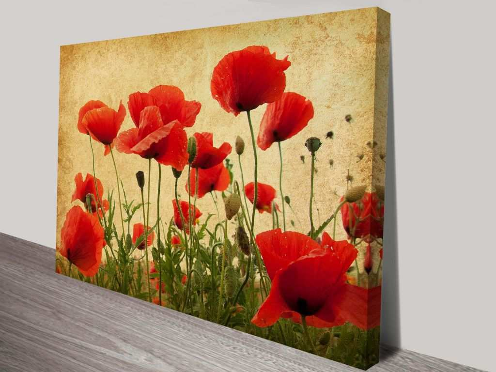 Canvas Print Ideas Wall Lovely Wall Art Ideas Red Poppy Canvas Wall ...