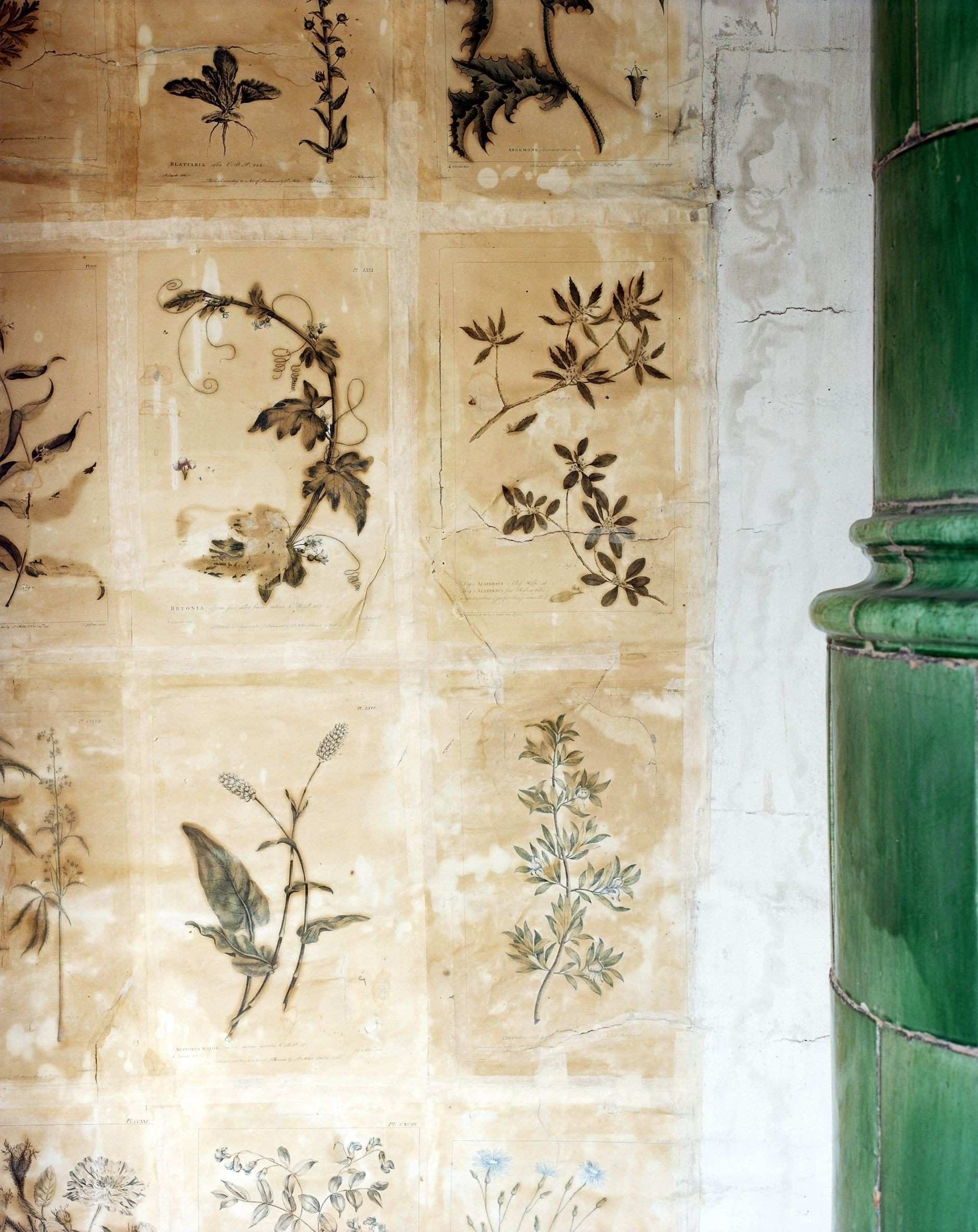 You could easily mimic the look of this wall by hanging a series of