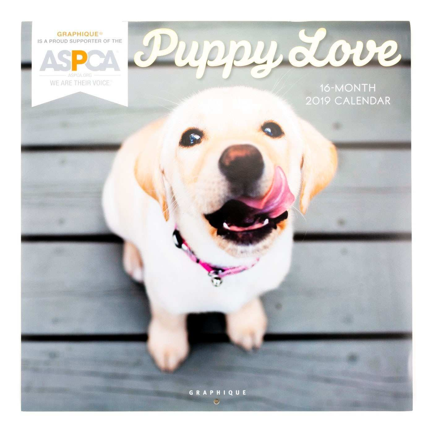 2019 Puppy Love Wall Calendar