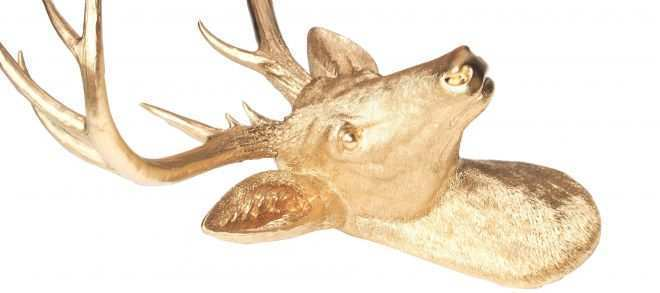 Deer Head Wall Decor Luxury Perfect Decorative Stag Head Wall Ideas Wall Art Collections