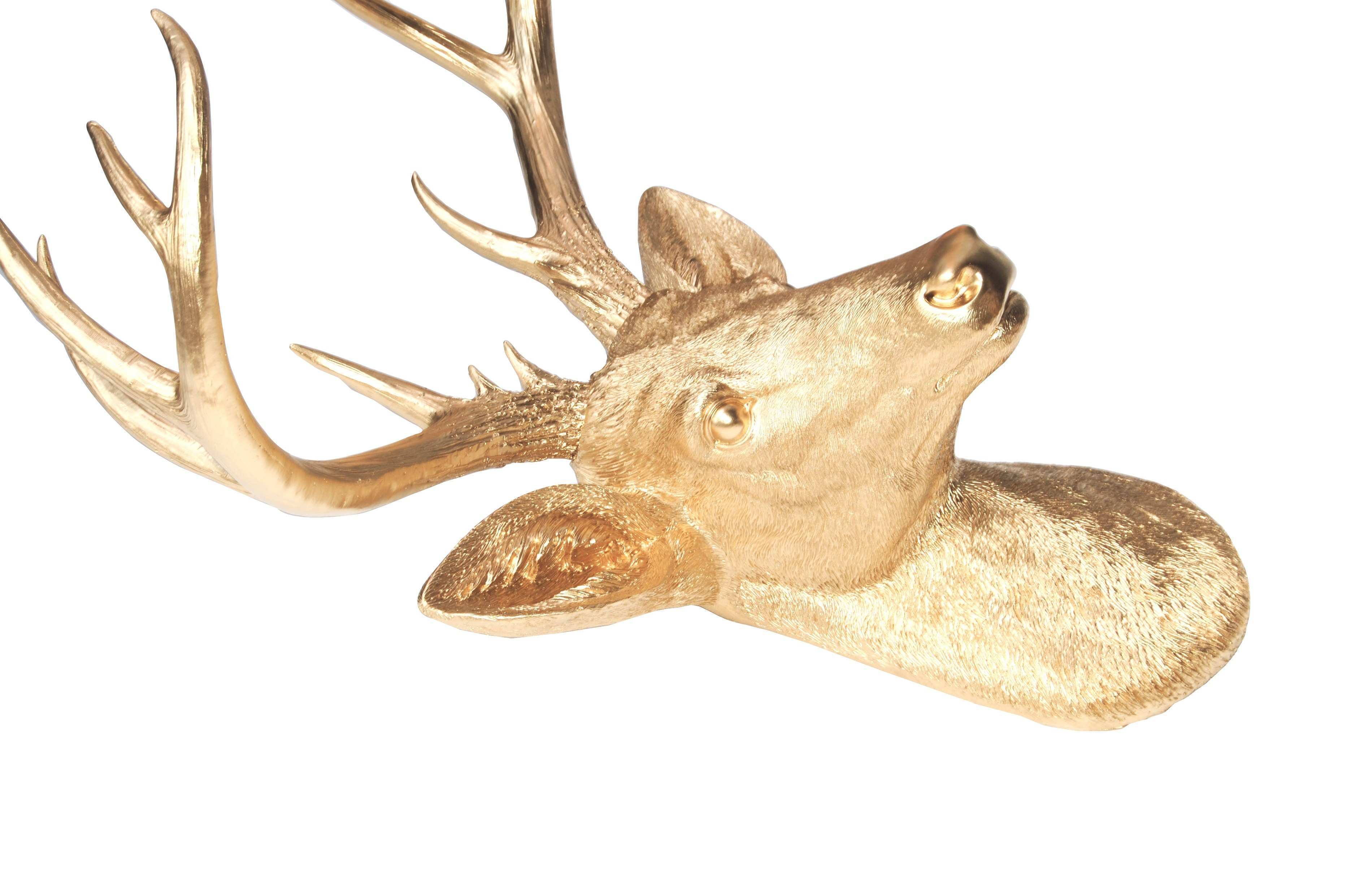 Perfect Decorative Stag Head Wall Ideas Wall Art Collections