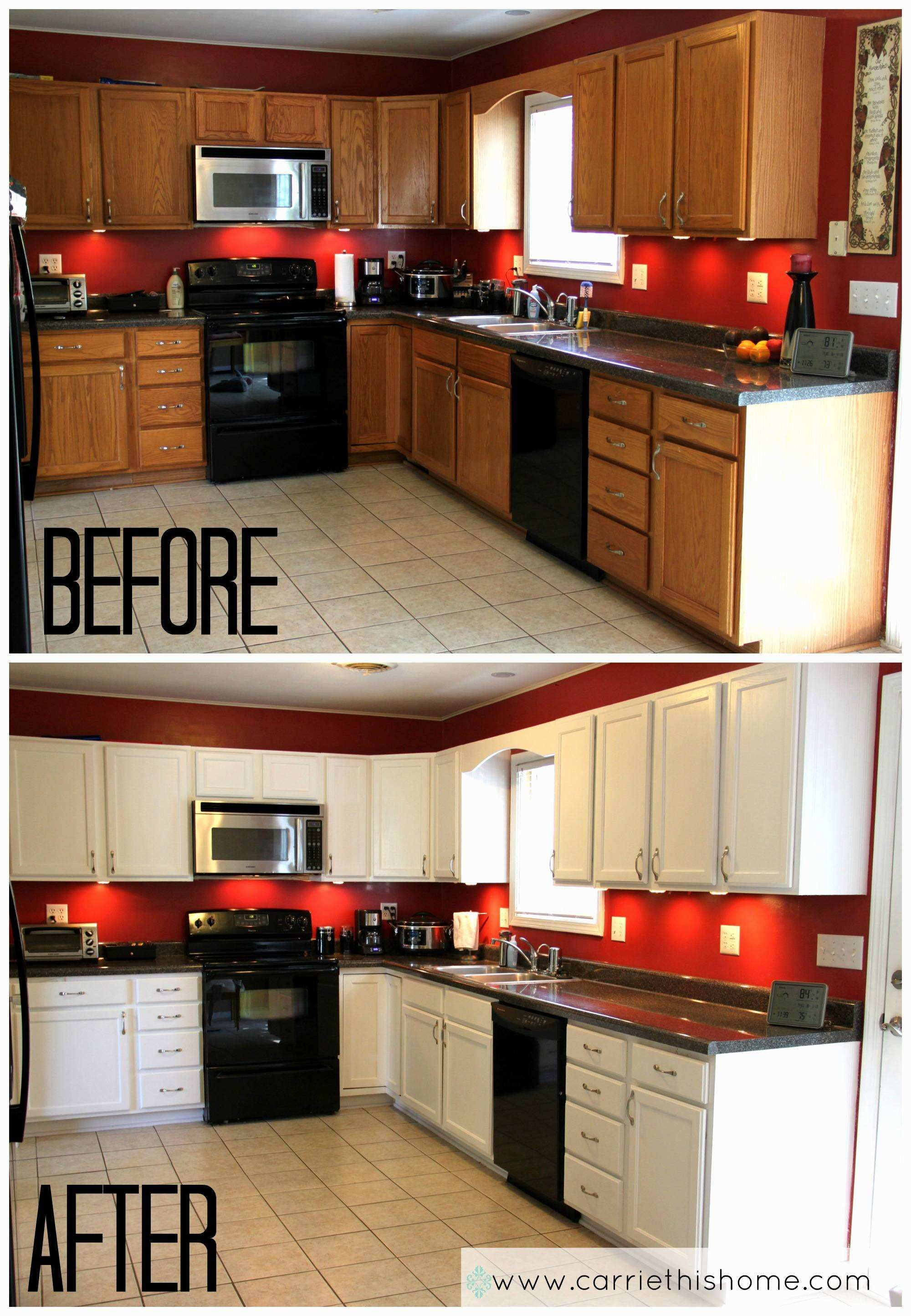 Painting Kitchen Cabinets A Good Idea Best Kitchen Light Cover
