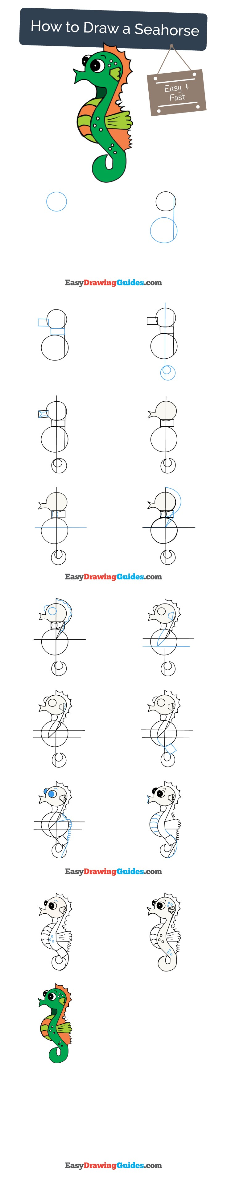 How to Draw a Seahorse Step by Step Pinterest