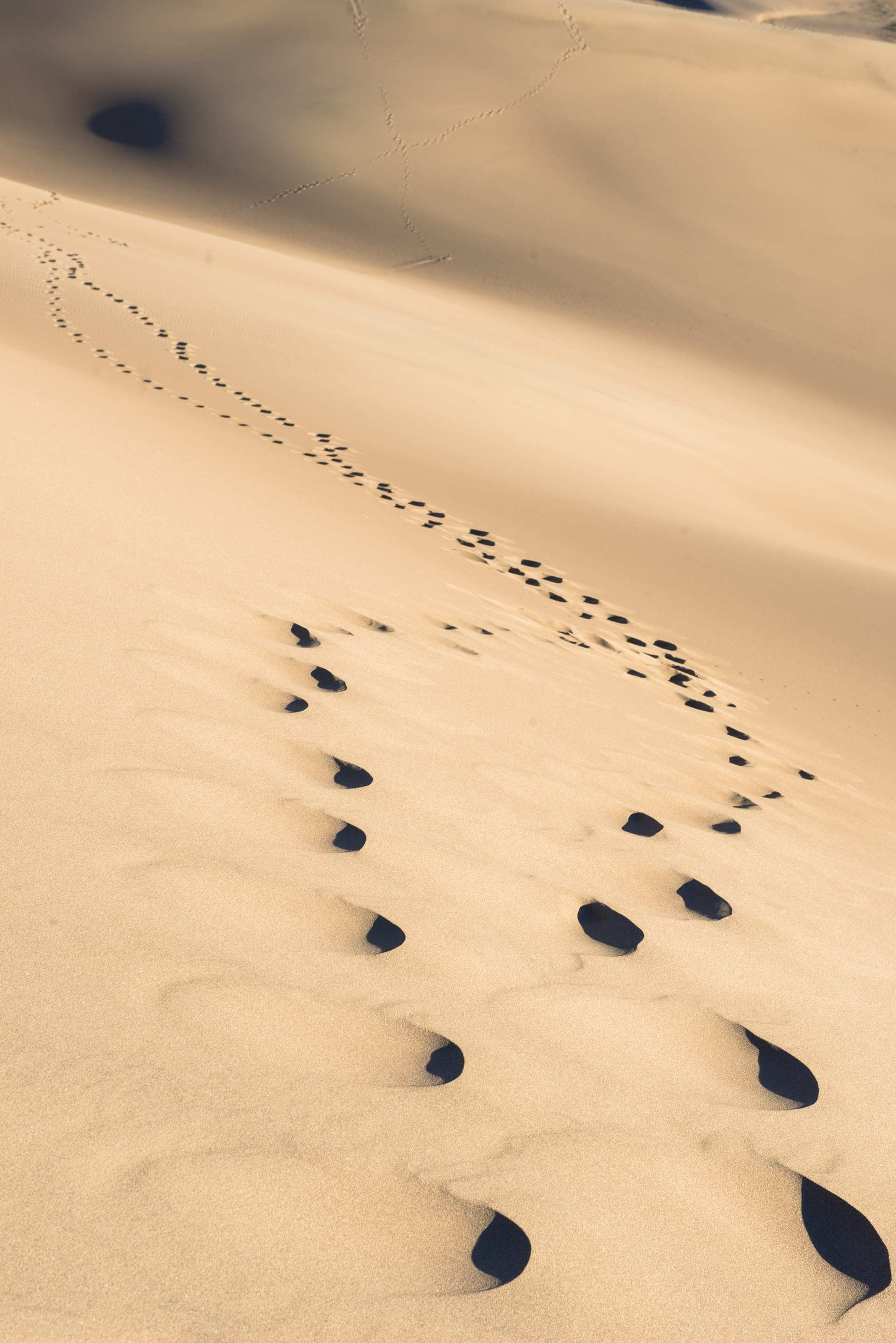 Luxury Footprints In the Sand Wall Art | Wall Art Ideas