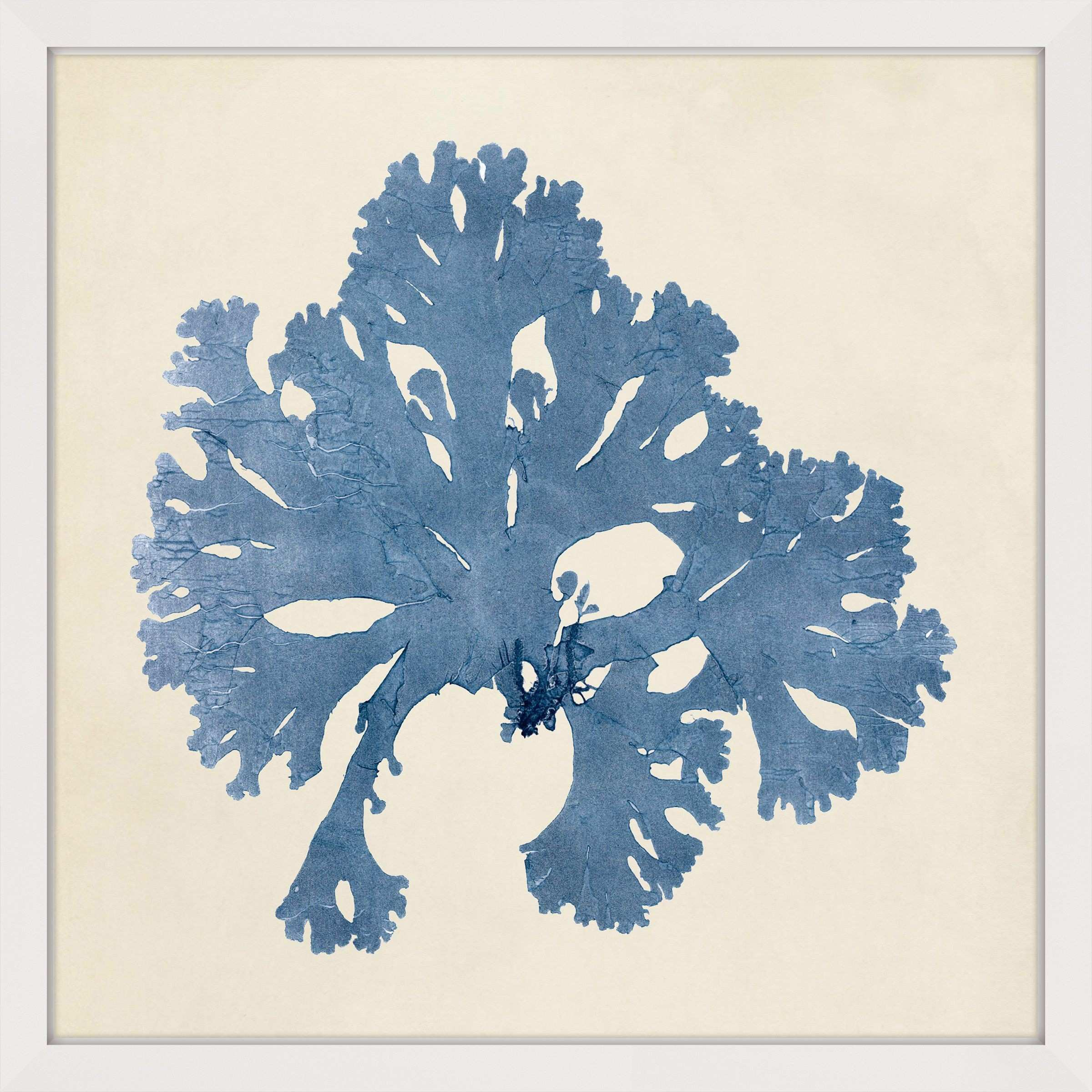 Marmont Hill Chromatic Seaweed V Framed Painting Print
