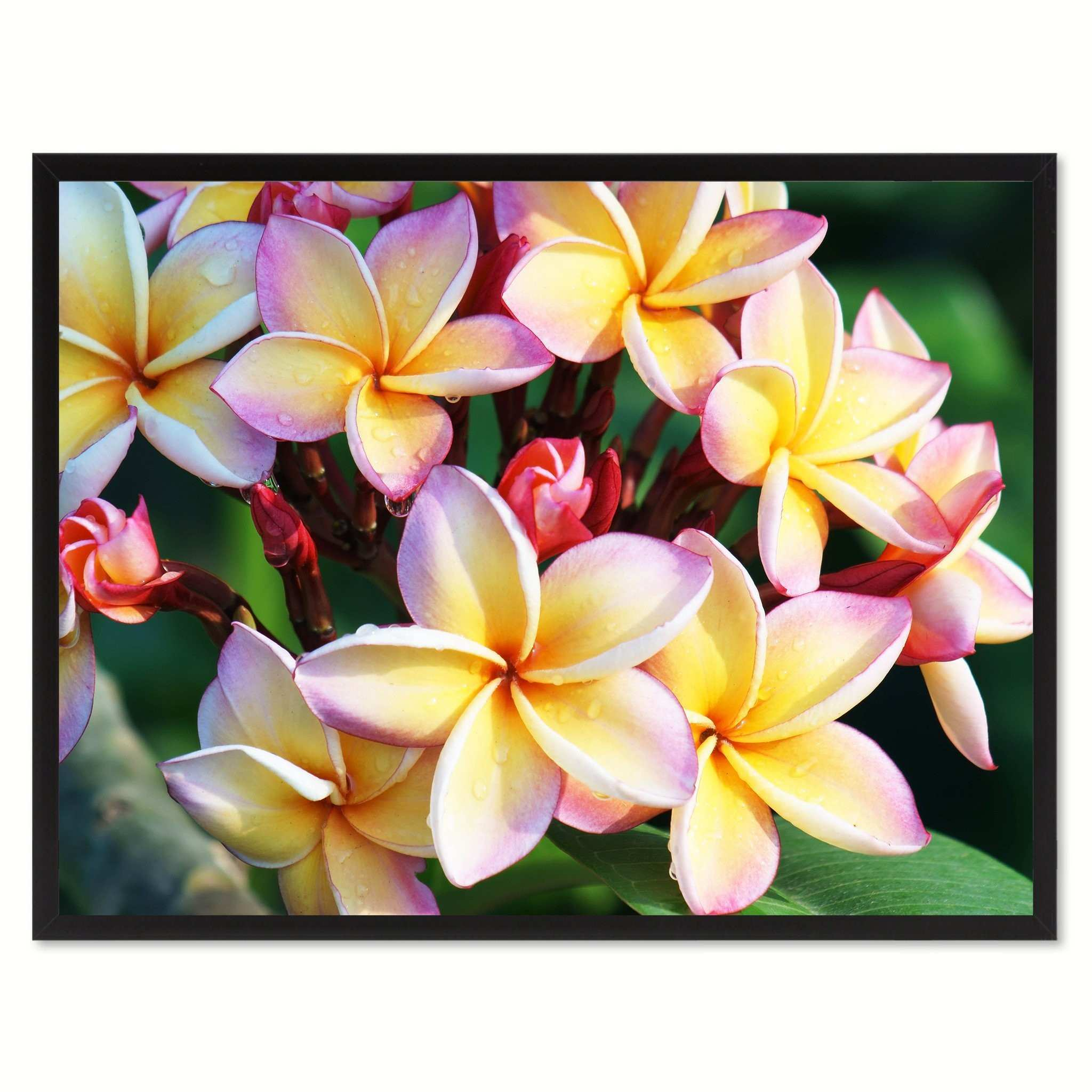 Fantastic Flower Wall Art Decor Picture Collection Art & Wall