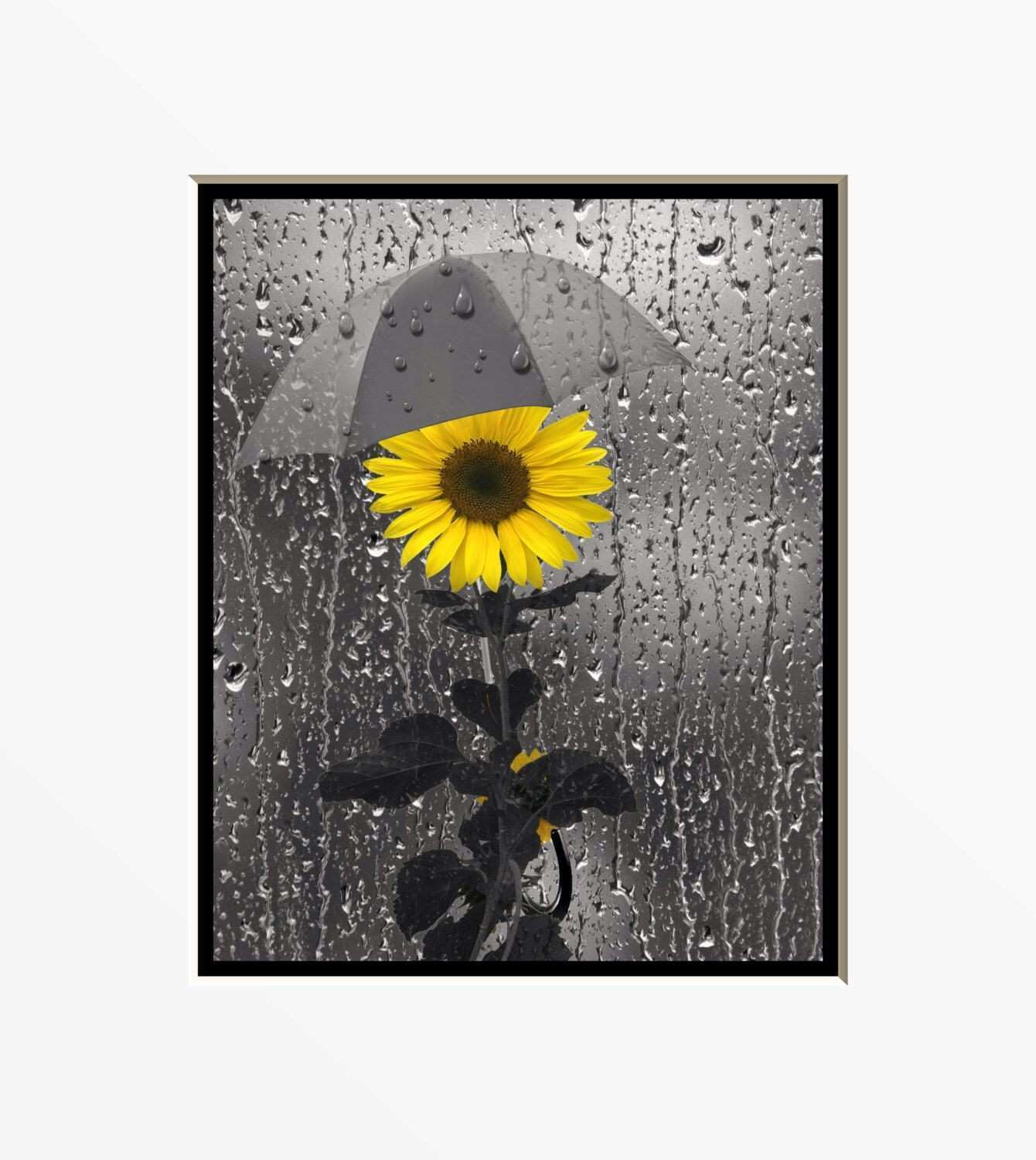 Yellow Gray Wall Art graphy Sunflower Rain Bathroom Home Decor