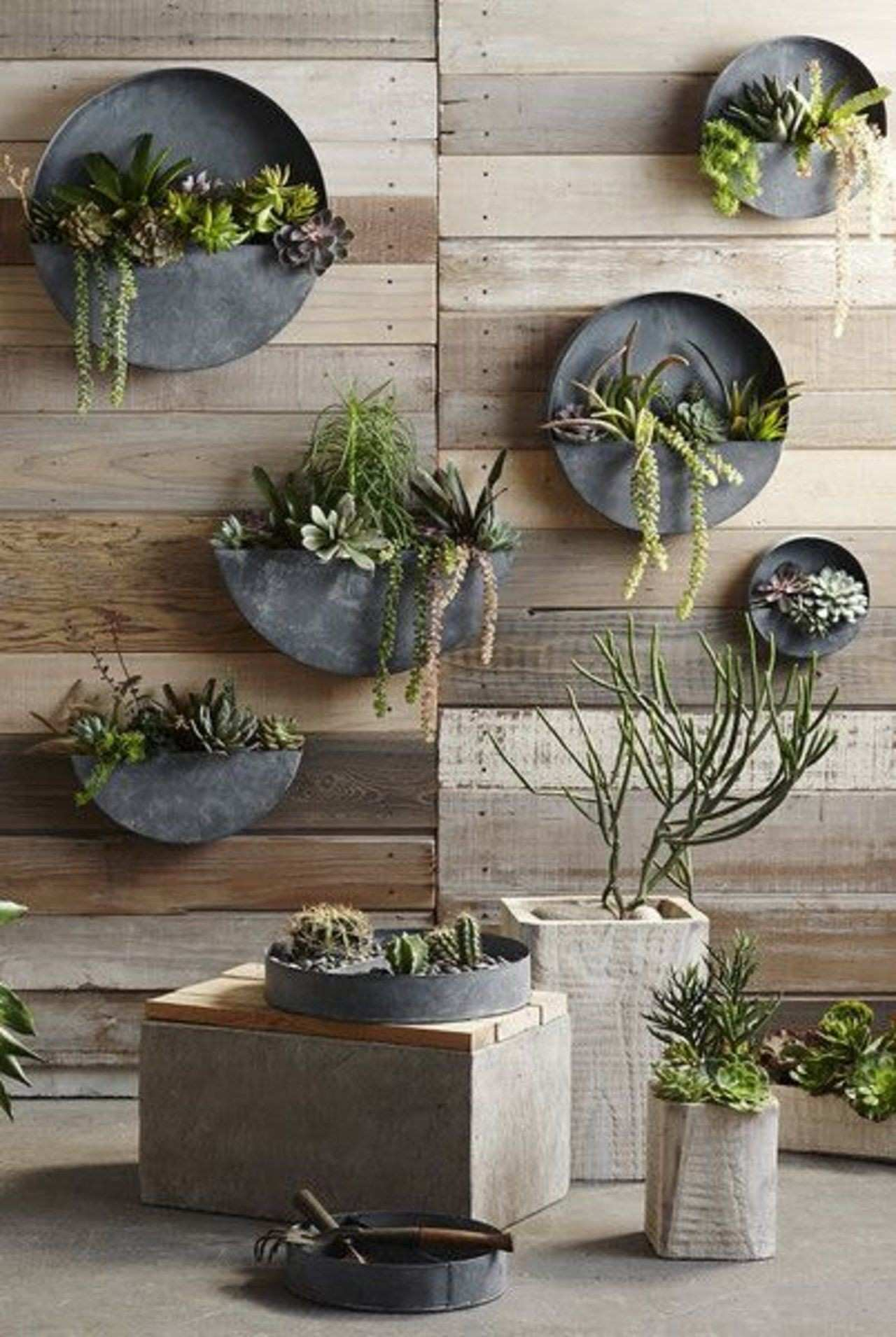 Breathe New Life Into Your Space With a Living Wall