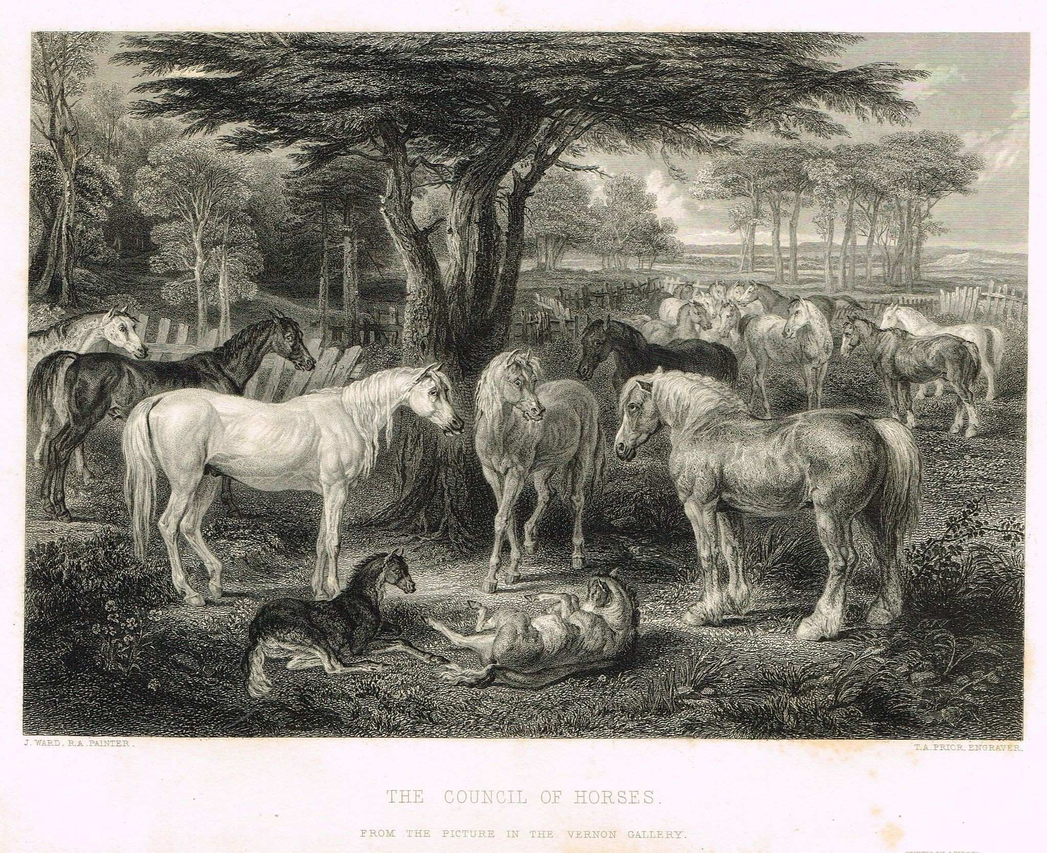 "Art Journal s ""THE COUNCIL OF HORSES"" by Ward Steel Engraving"