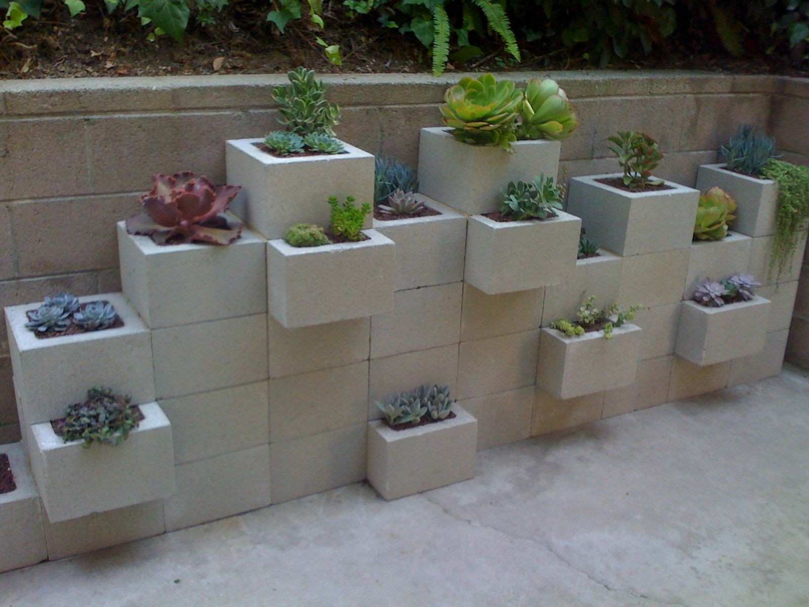 Using cinder blocks to make a planter for succulents or other plants