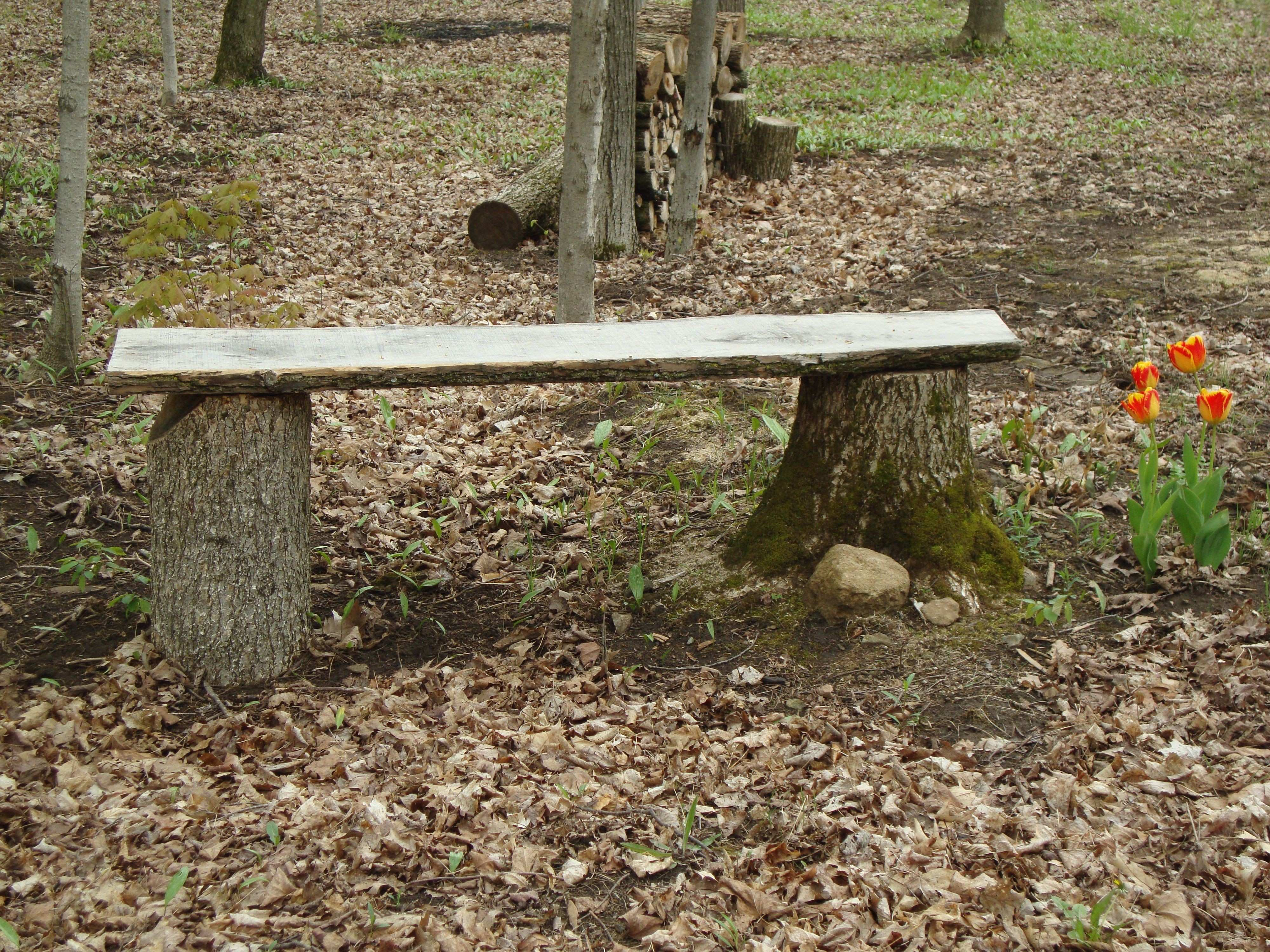 Rustic Outdoor bench made from two tree stumps and a piece of slab