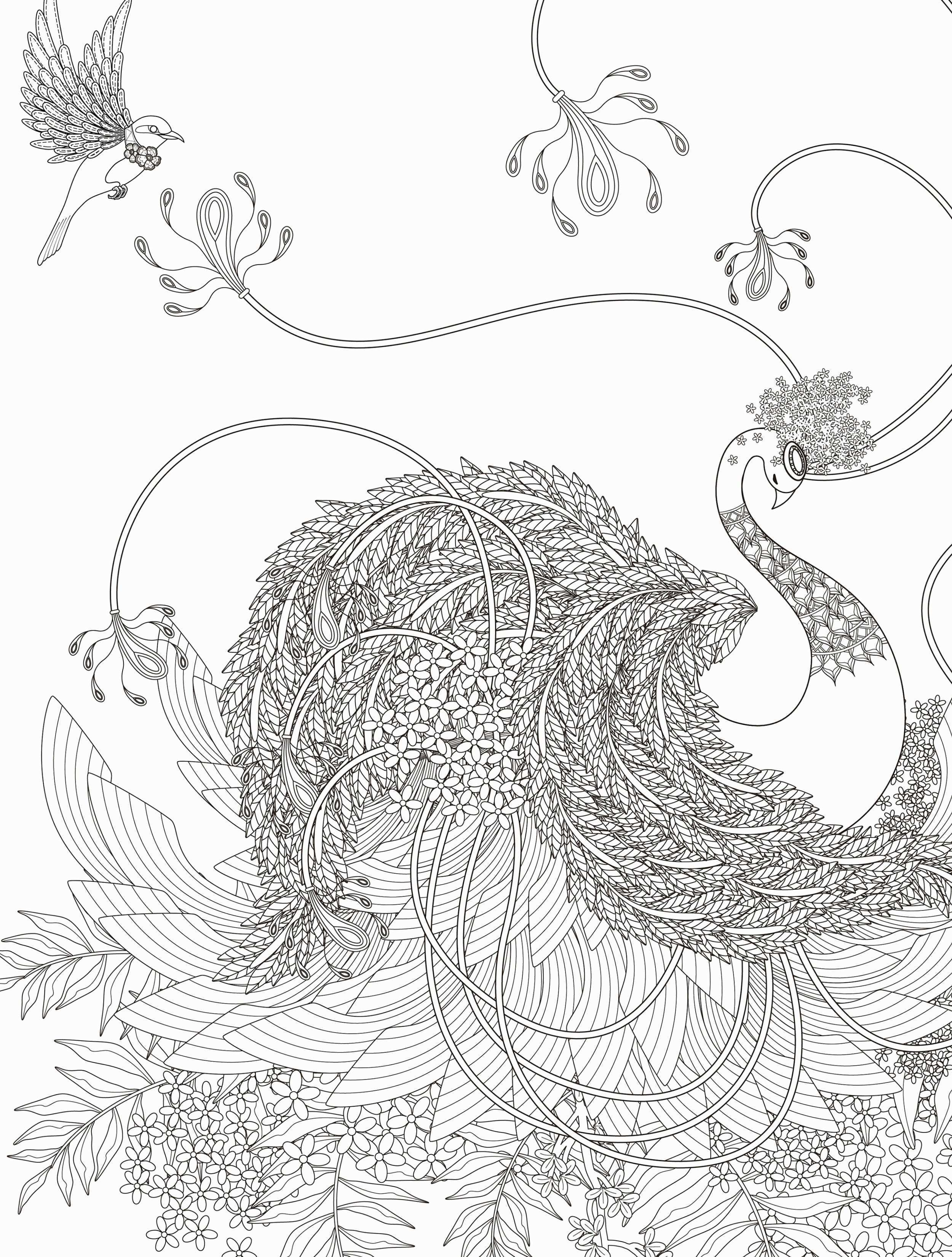 Cool 48 Lovely Collection Anger Coloring Pages – Coloring Sheets For