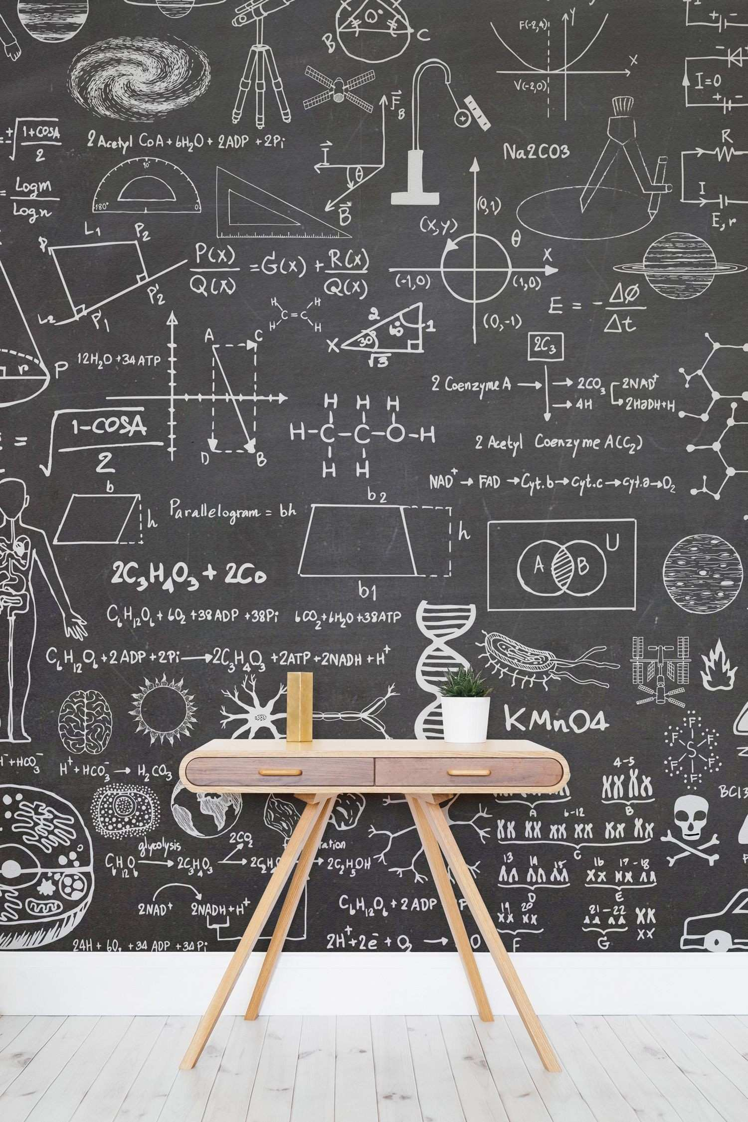 Educational Wallpapers The Perfect Ideas for your Kid s Bedroom