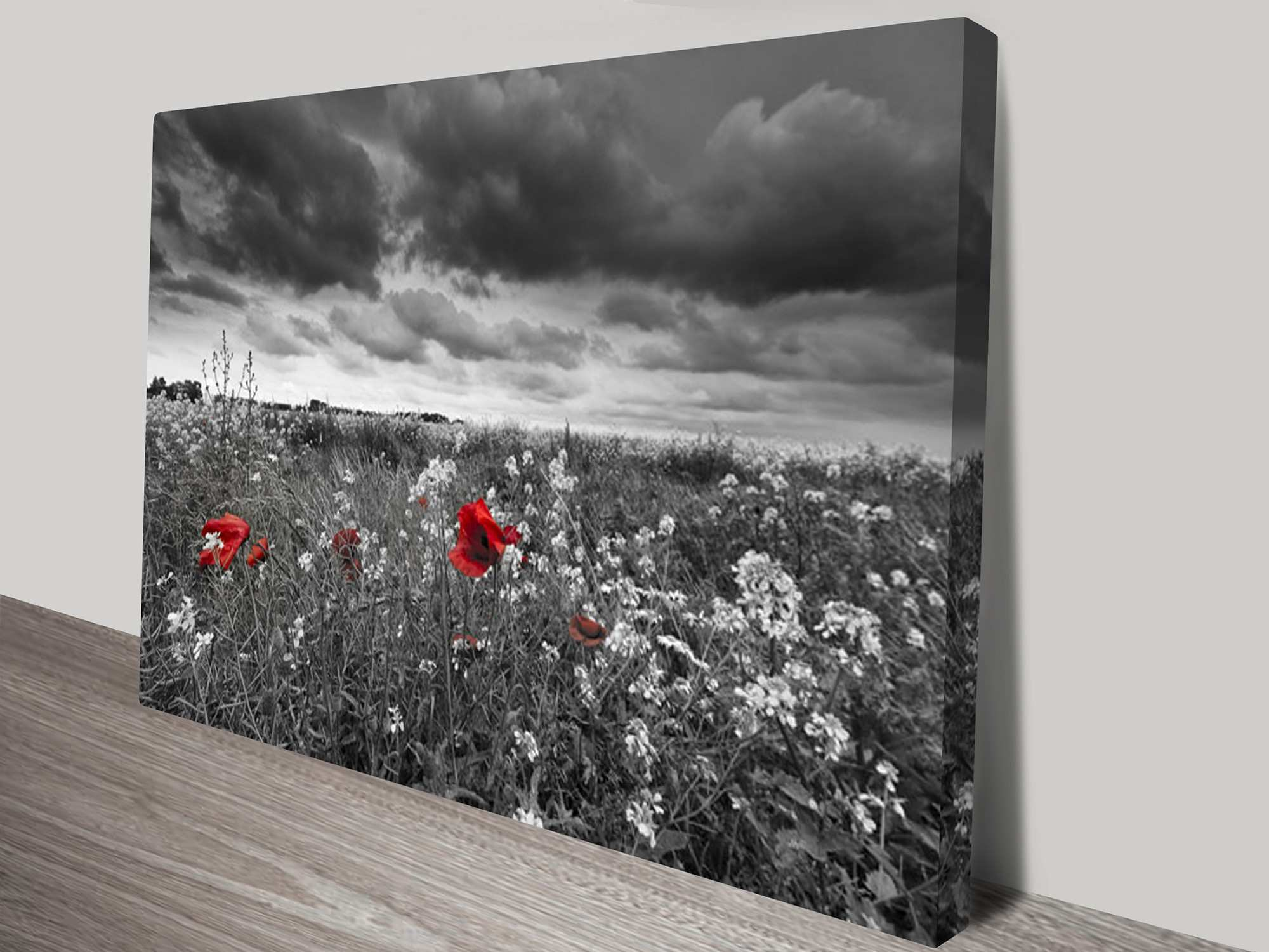 Art black and white canvas wall art And White Print Black And