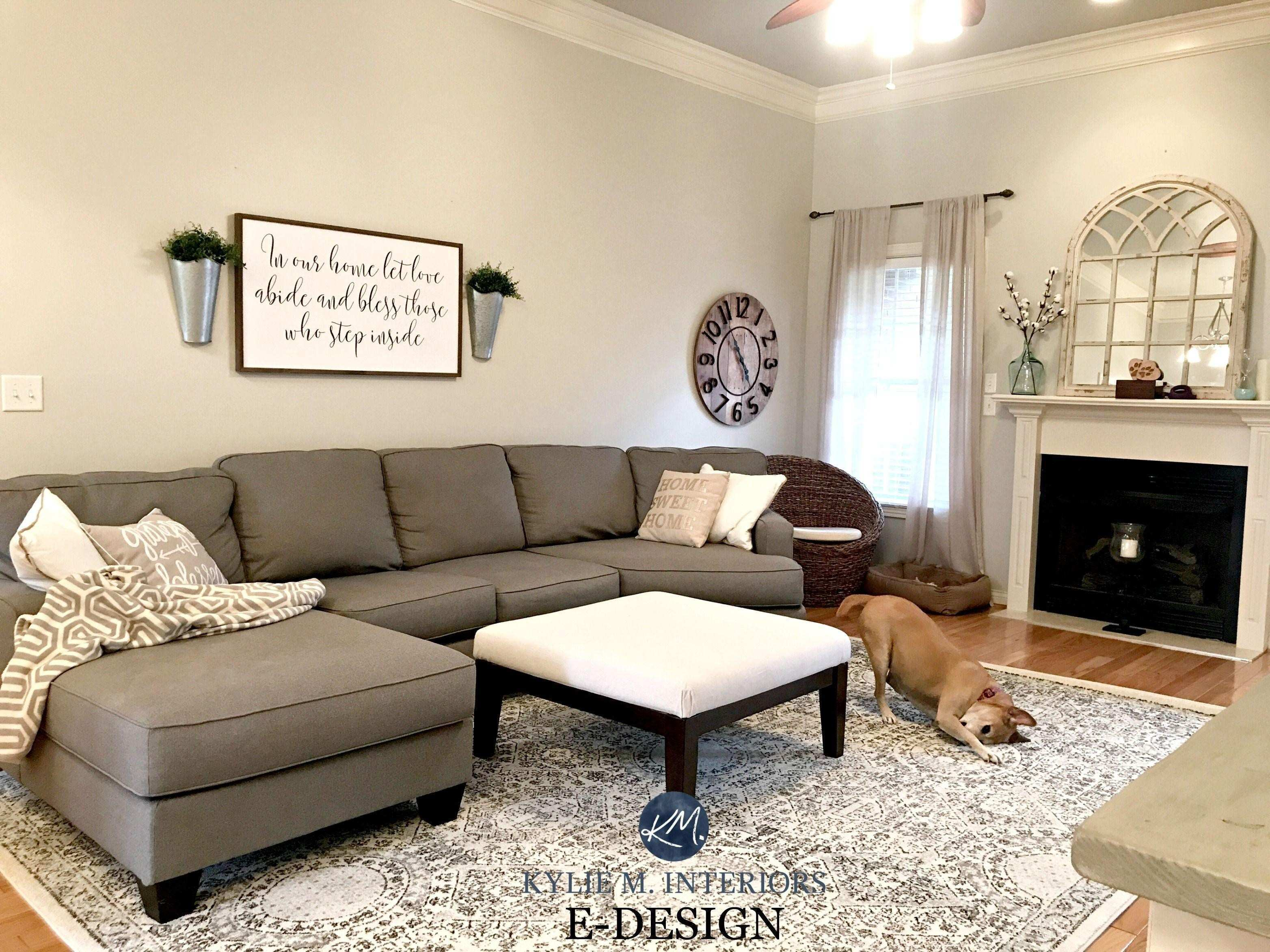 47 New Decorating A Living Room Pic