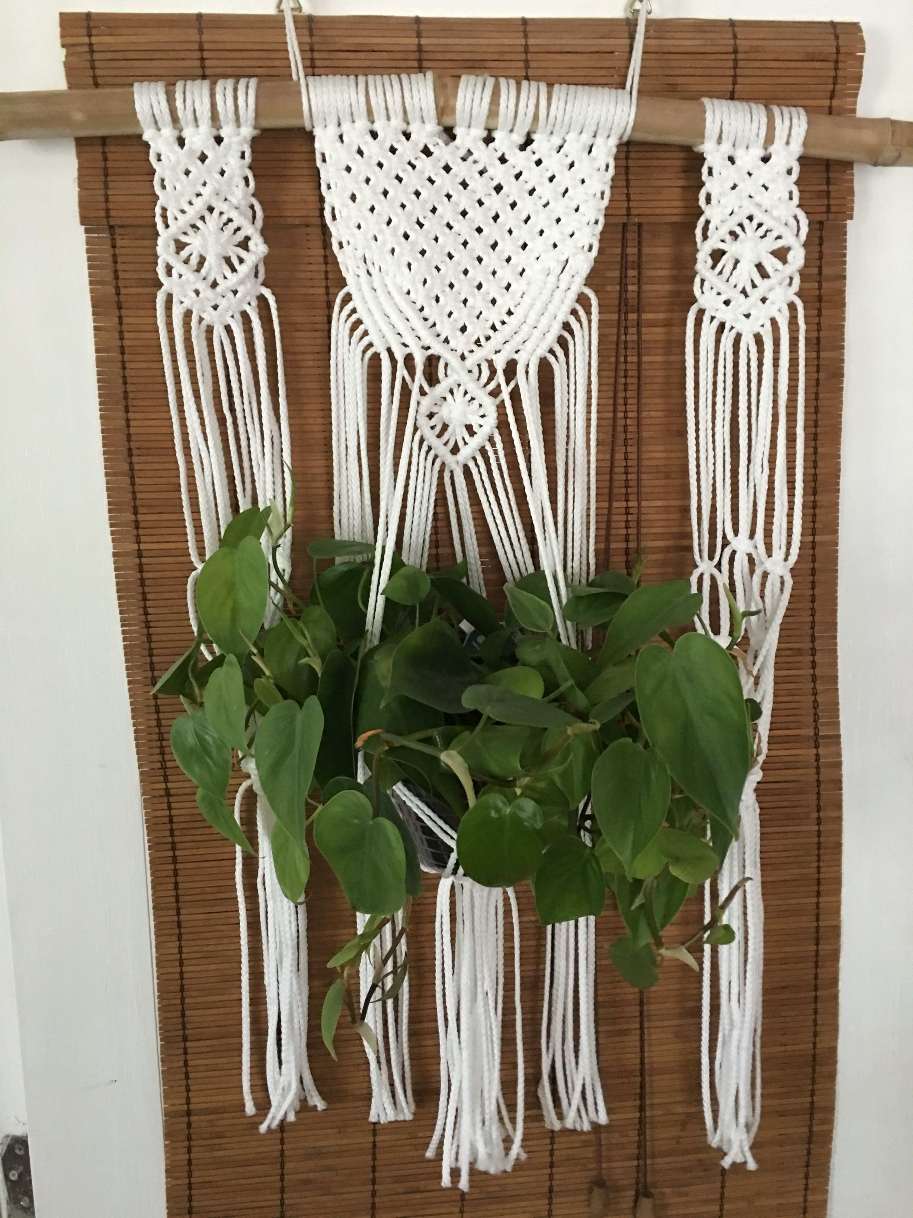 Macrame wall planter Holds 3 plants Made with nylon cord Looks