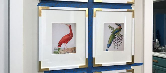 Picture Placement On Wall Lovely New Living Room Artwork — Gallery Wall Bird Illustrations