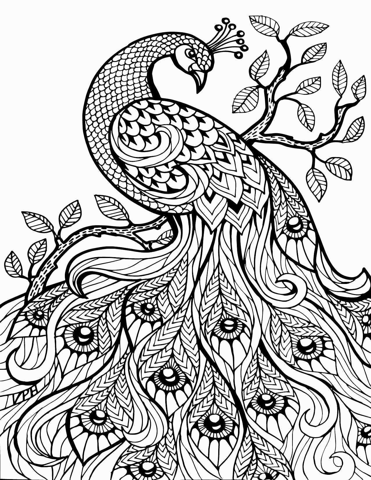 Print Free Beautiful Print Coloring Pages Luxury S S Media