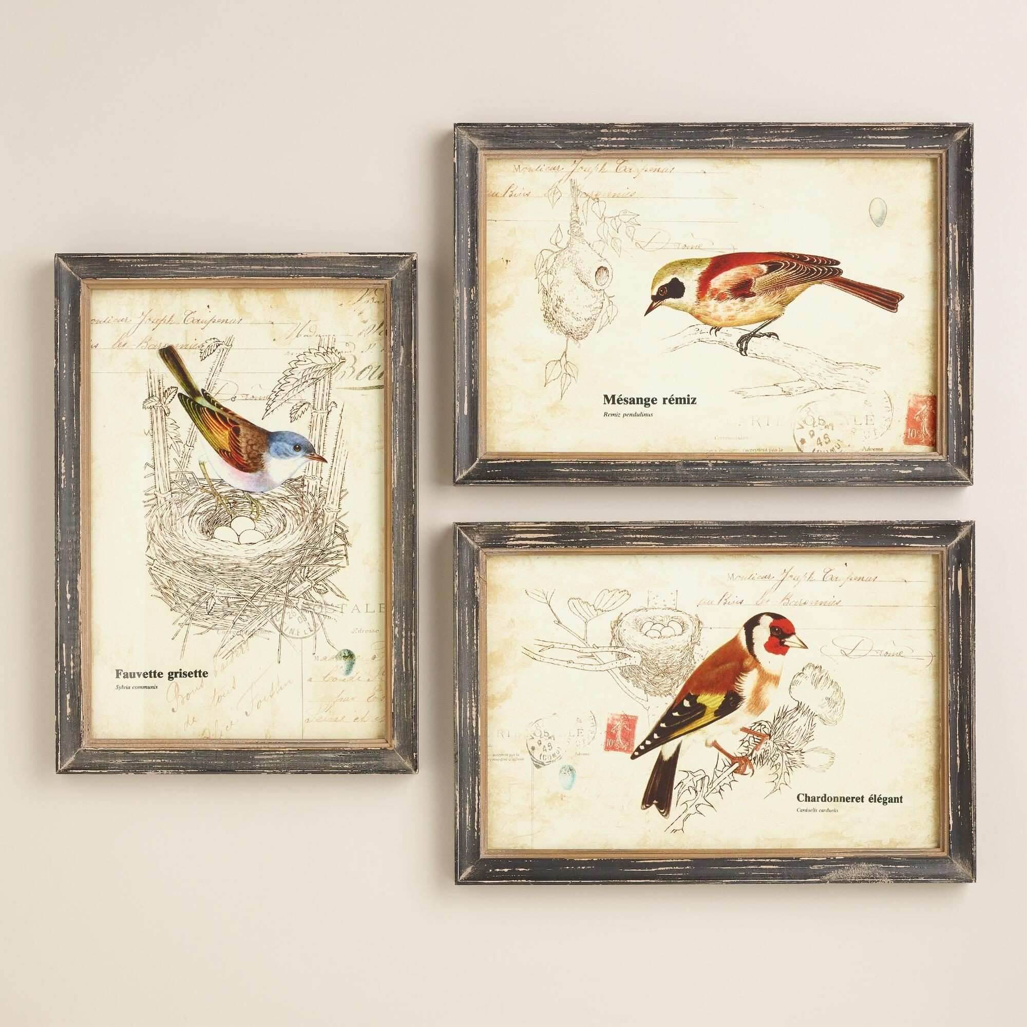 Reminiscent of vintage postcards our Nature Birds Wall Art features