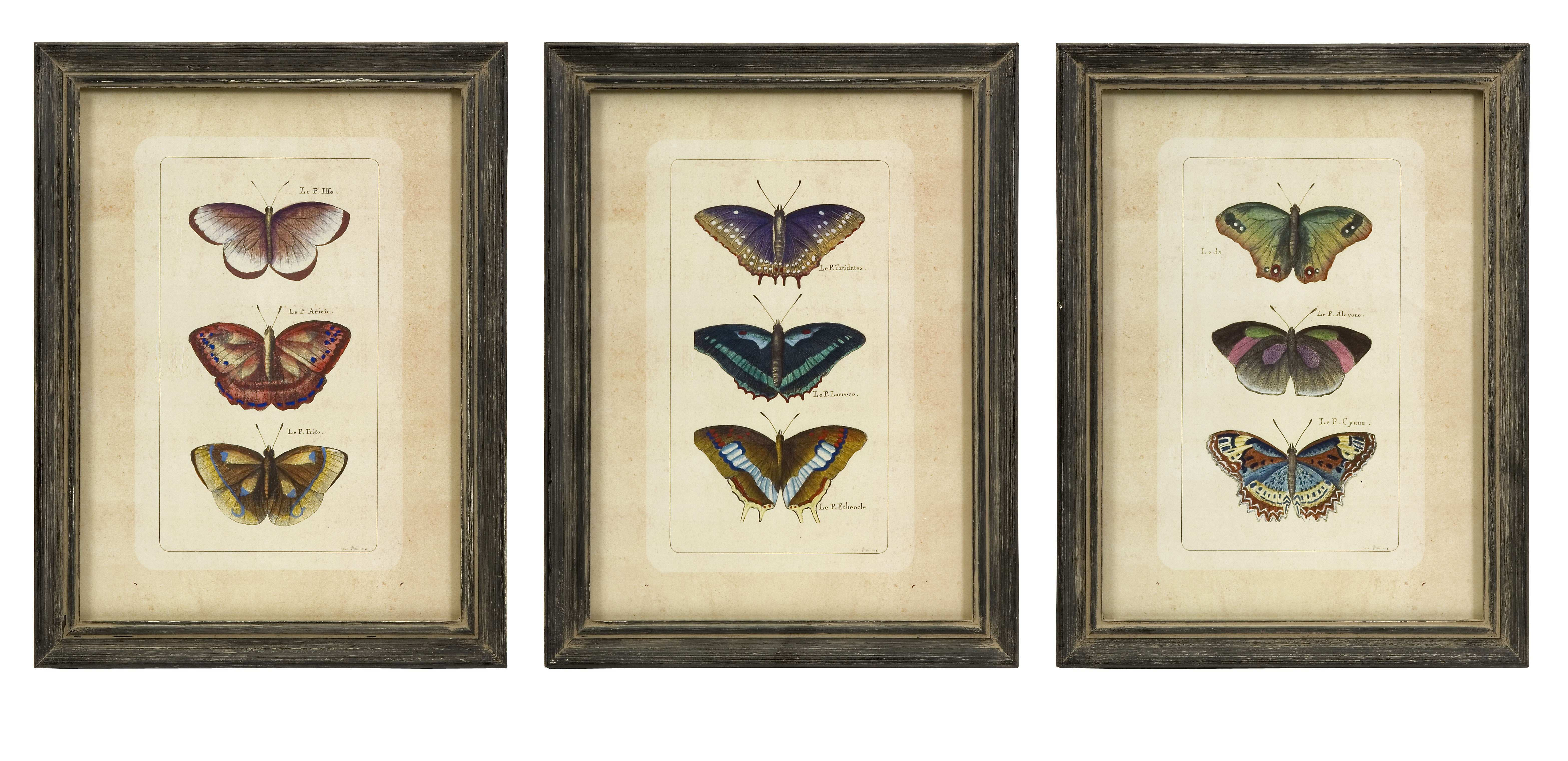 Butterfly Collection Wall Art Set of 3 $71 25
