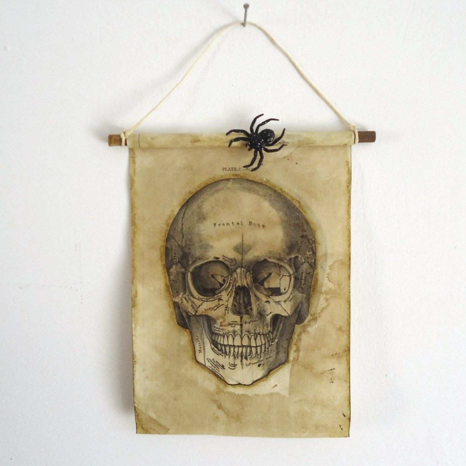Haunted house decor Scary Halloween skull wall decor Haunted prop