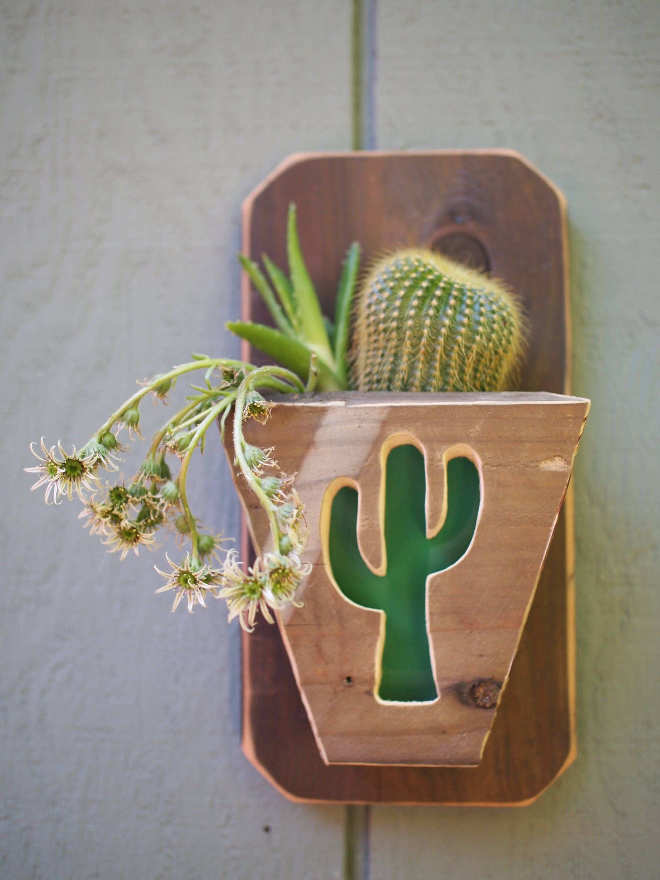 Hanging planters Reclaimed Wood Planter Cactus wall decor