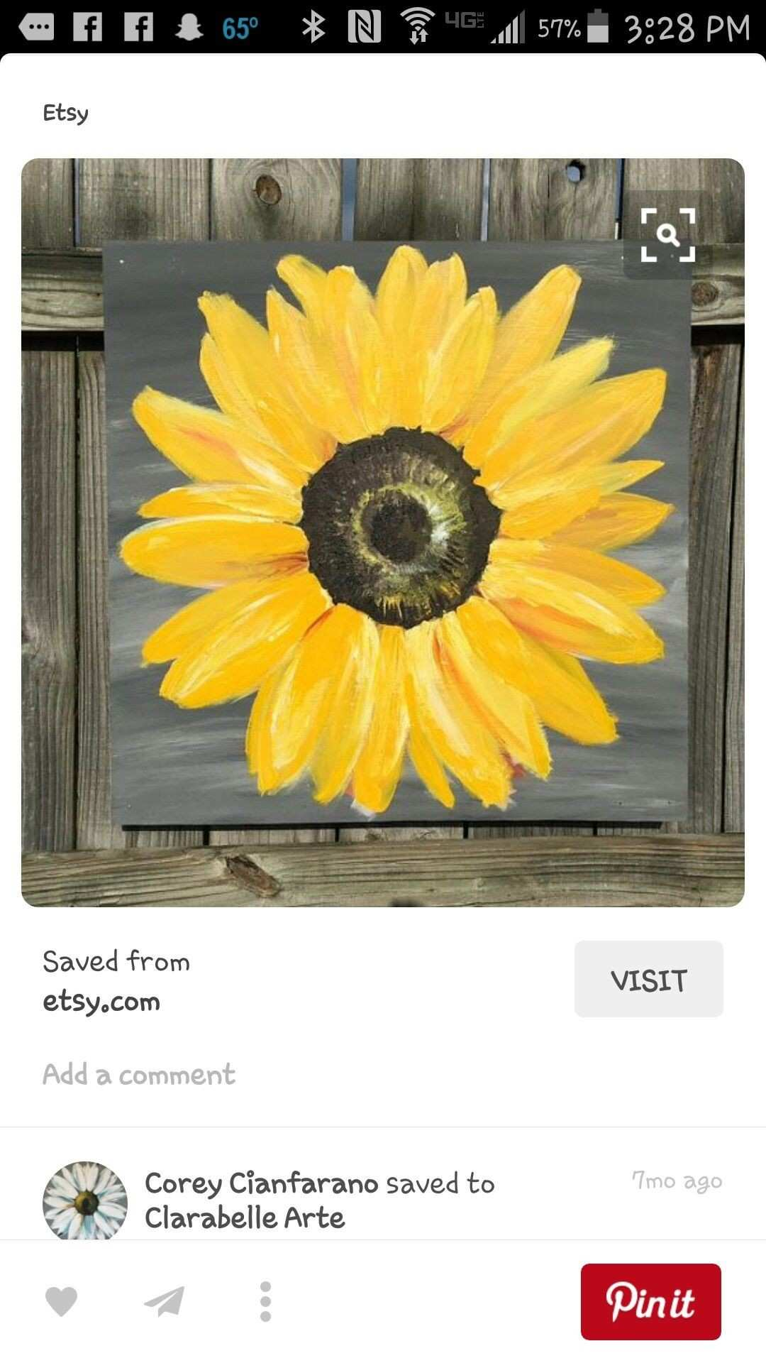 Pin by karen hughes on things to paint Pinterest