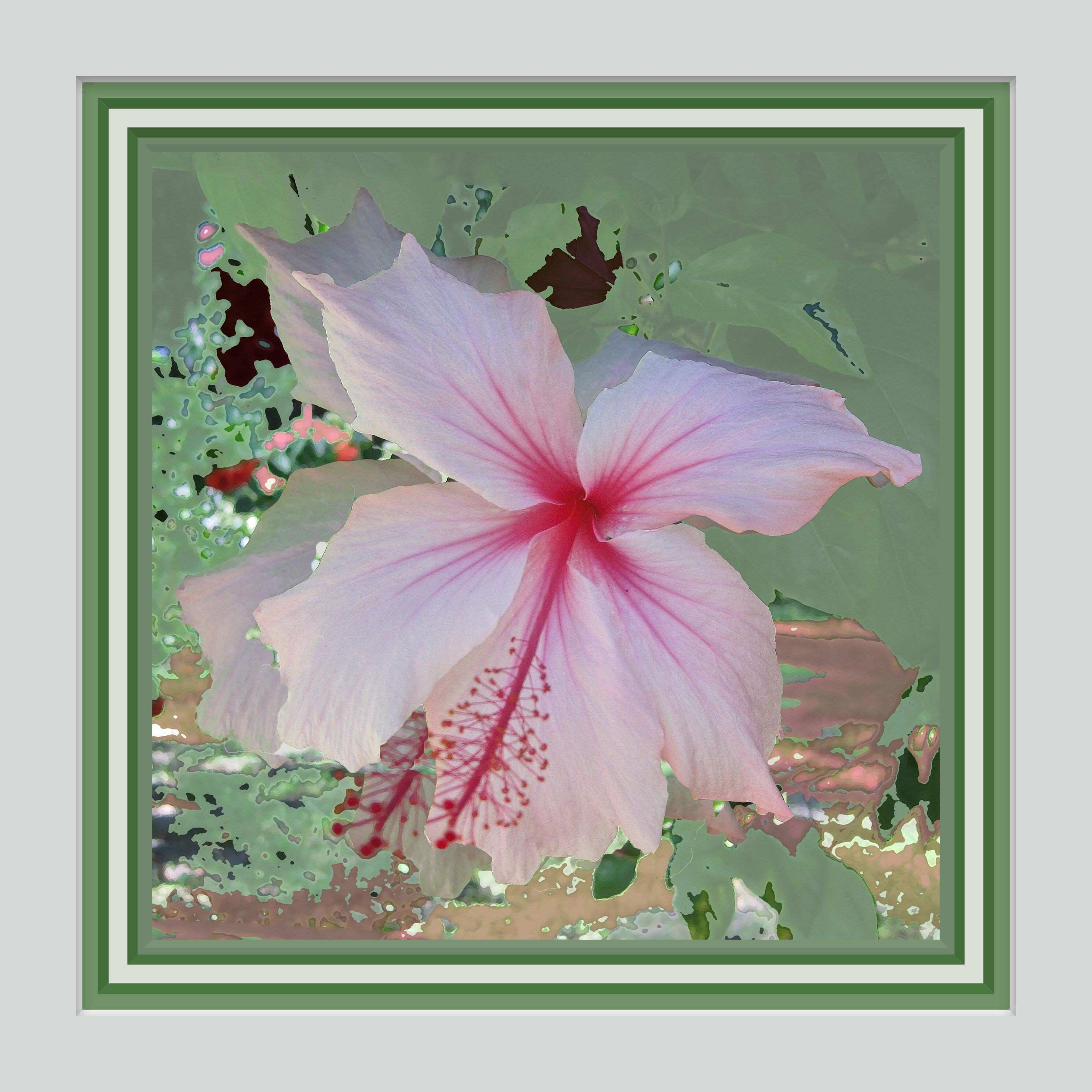 Wall Art Weeping Hibiscus 12x12 Frame Ready Coordinated Triple