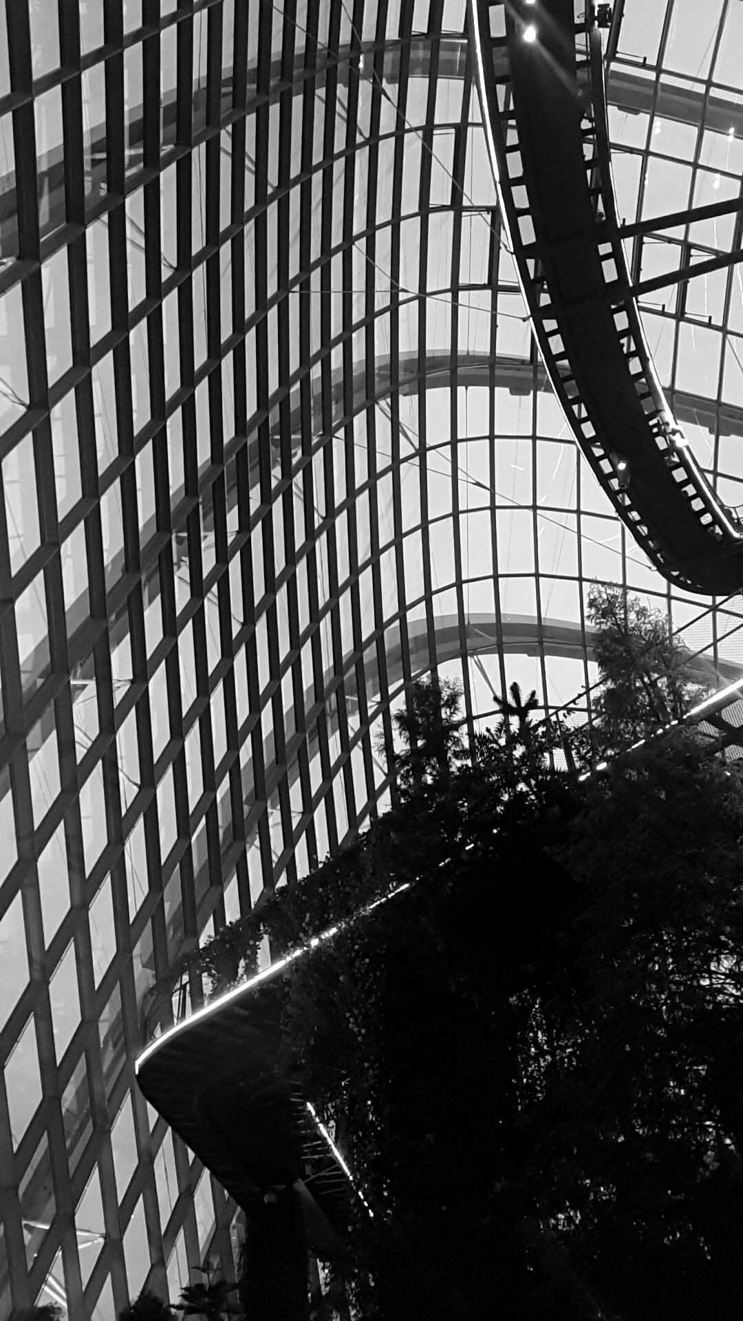 Cloud Forest Garden by the Bay Singapore black & white