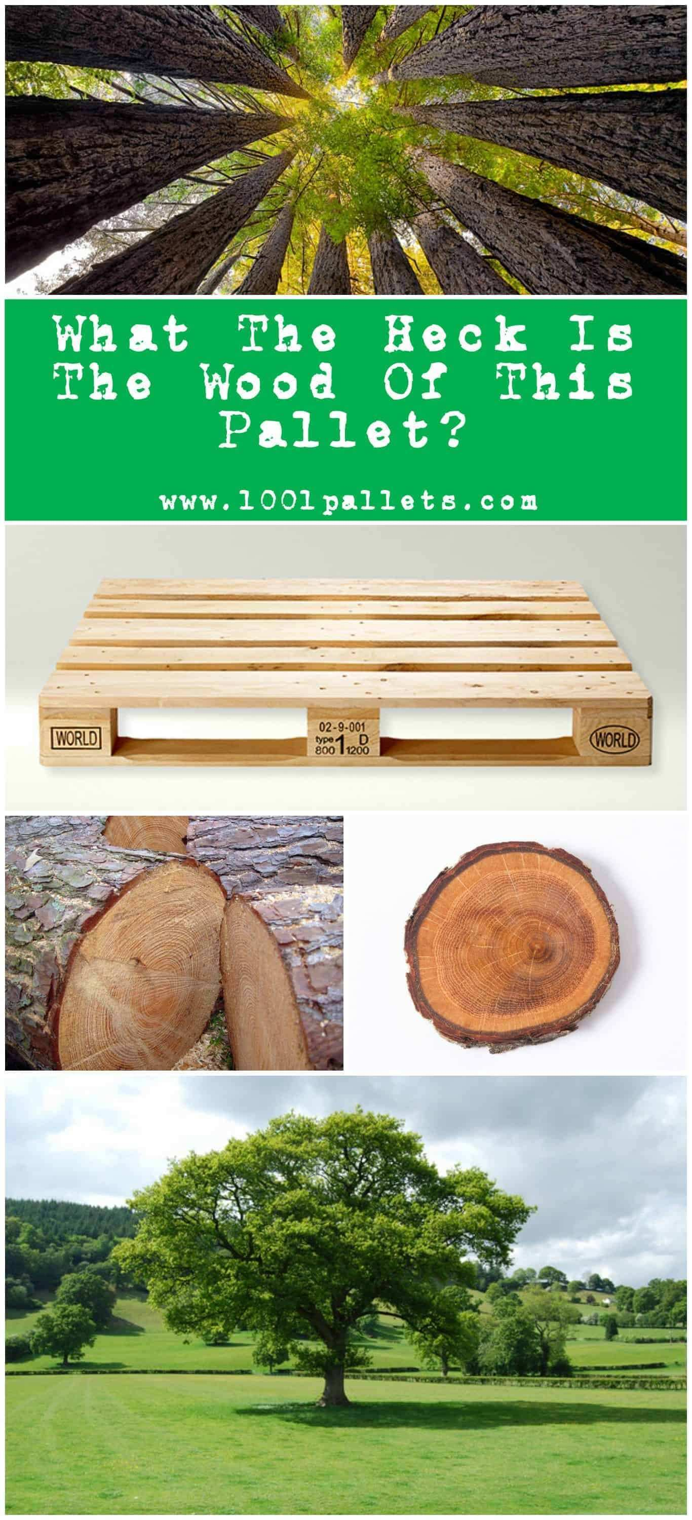 Wood types What The Heck Pallets Are Made Out • 1001 Pallets