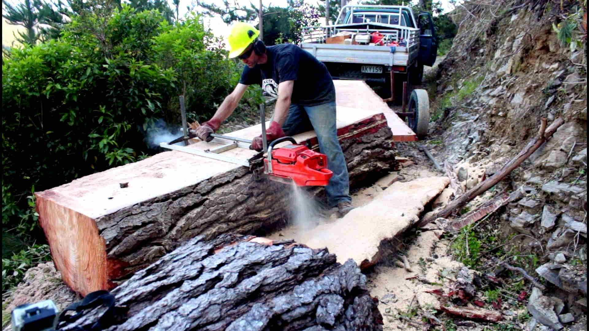Felling a big pine tree & milling slabs with a portable Chainsaw